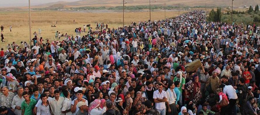 Syrian Refugees Get Relocated By Government, Immediately Do THIS