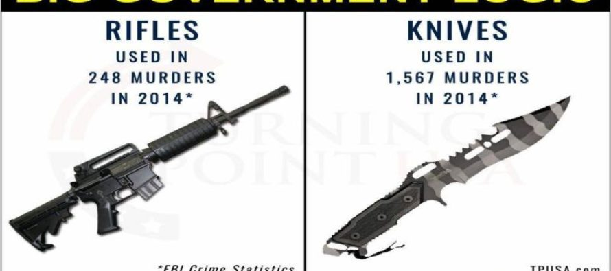 Big Government's RIDICULOUS Logic On Gun Control [Meme]