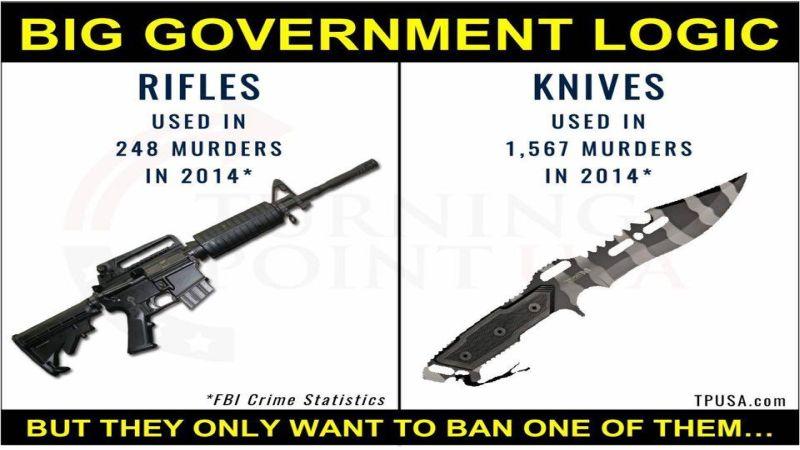 big gov logic 800