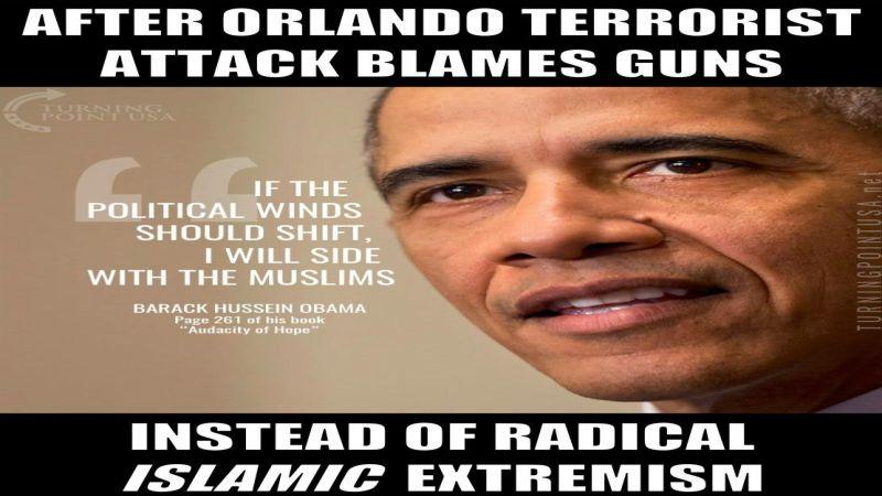 blame guns 800 FB
