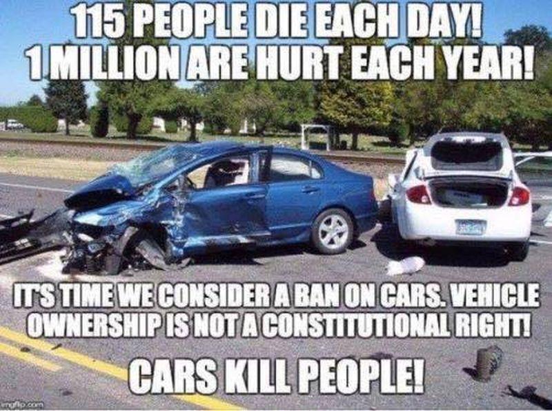 cars kill 800
