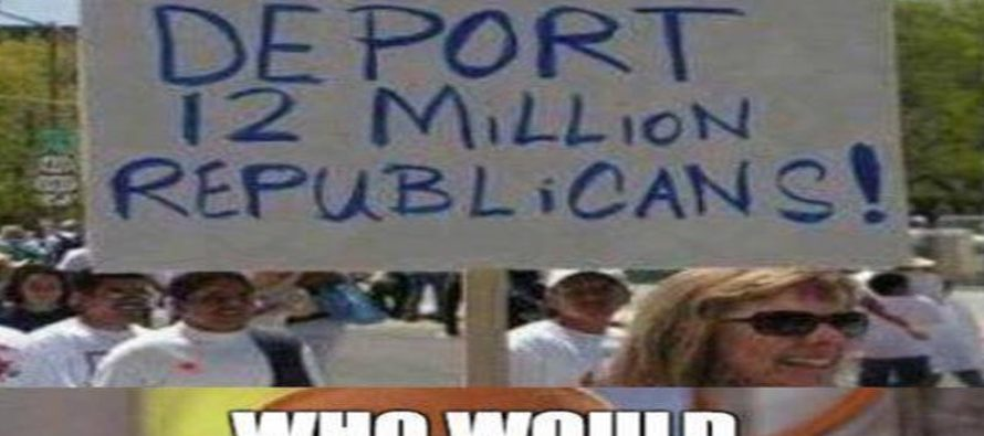 Liberal Protesters SHUT DOWN in One Meme