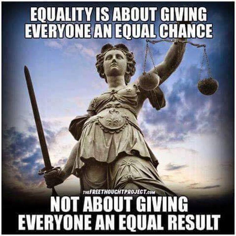 equality 750