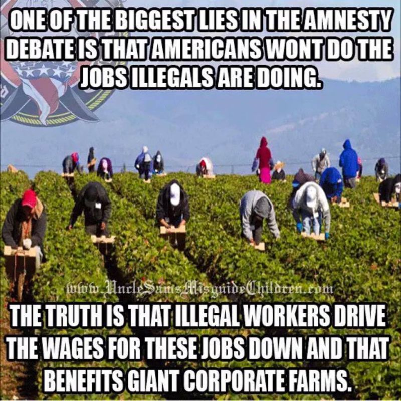 Image result for illegal aliens jobs