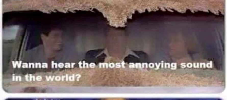 Hilarious Meme Explains the WORST Sound in the World