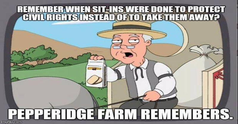 pepperidge farms 800