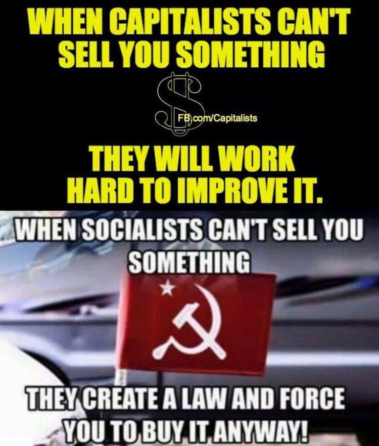 socialist VS capitalist 750