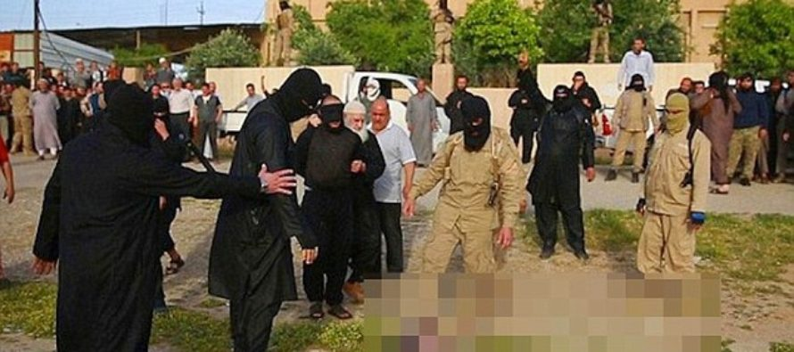 Seven ISIS fighters in Iraq who fled the battlefield are BOILED ALIVE as punishment