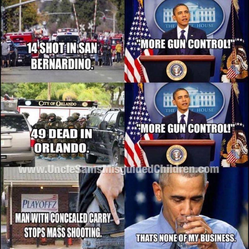 Obama guns 800