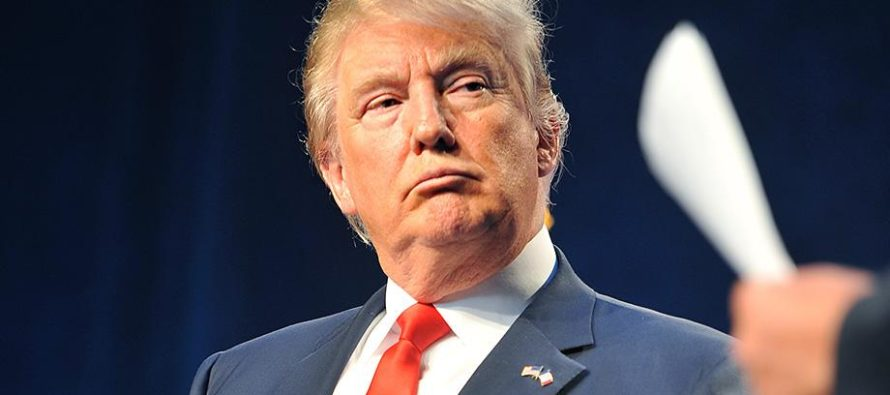 Trump's Running Mate: REVEALED