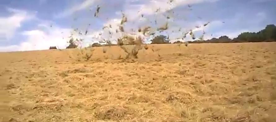 VIDEO: This Dust Devil Floating Things in Mid-Air is FREAKY