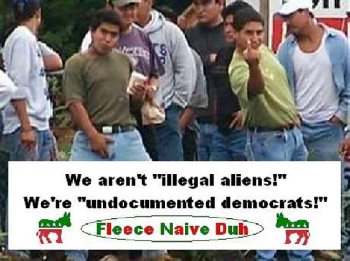 illegal-aliens-were-not-illegal-aliens-were-undocumented-democrats4