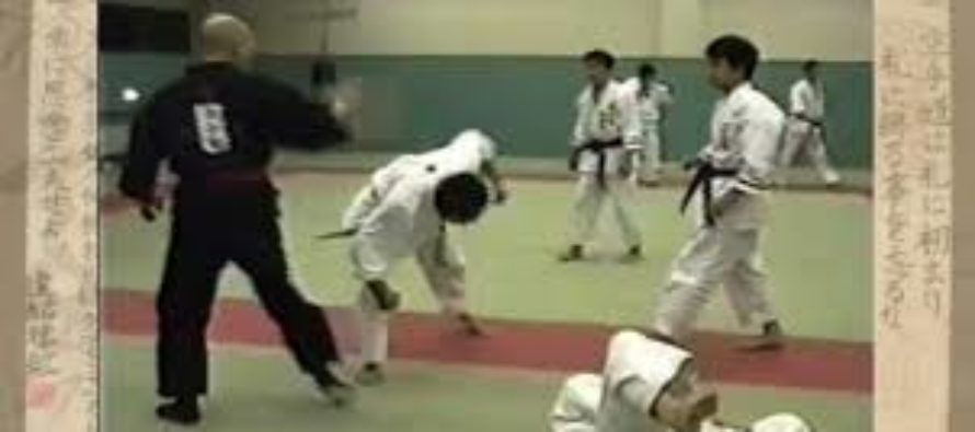 VIDEO: A No-Touch KO Grandmaster Bet $5000 He Can Beat any Mixed Martial Artist