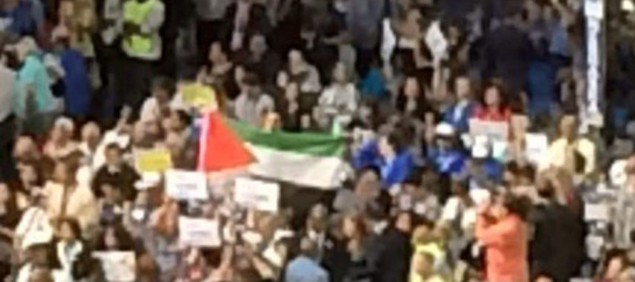 Democrat Congresscritter Compares Israelis to Termites