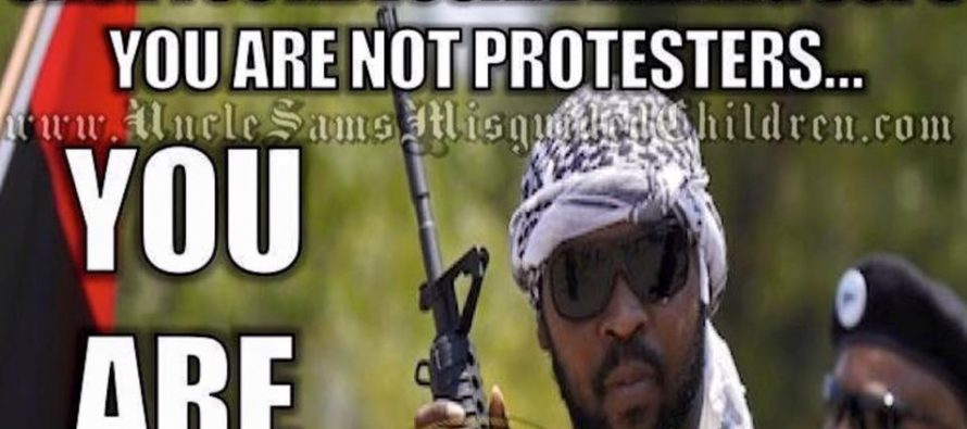 BLM Is No Longer Just A Group Of Activists – MEME Tells Us Why They Better Start Running…
