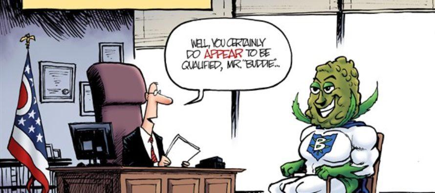 LOCAL OH – Medical Pot Expert (Cartoon)
