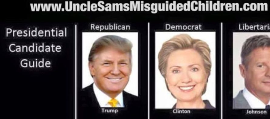 Handy Dandy Guide to Candidates Explains This Election Season PERFECTLY [Meme] [VIDEO]