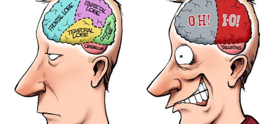 LOCAL OH – Buckeye Brain (Cartoon)