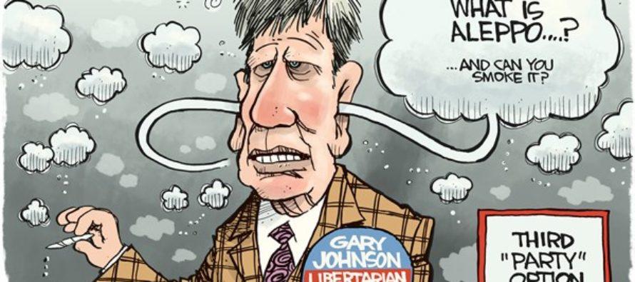 Gary Johnson (Cartoon)