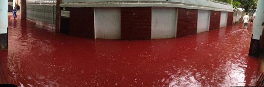 dhaka-river-blood