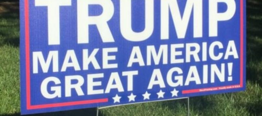 Woman Tries to Steal Trump Yard Sign…Gets Big Dose of Karma [VIDEO]