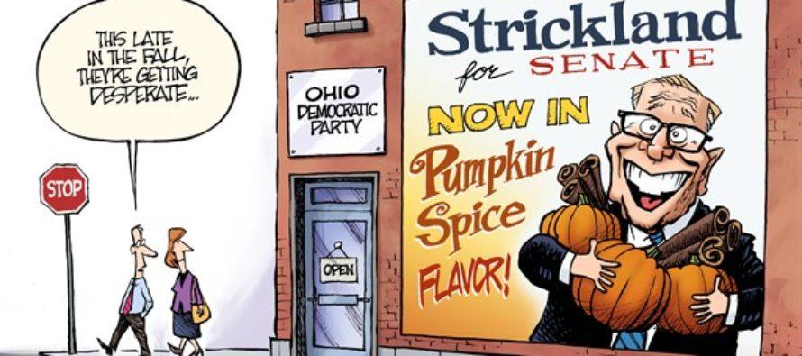 LOCAL OH – Pumpkin Ted (Cartoon)