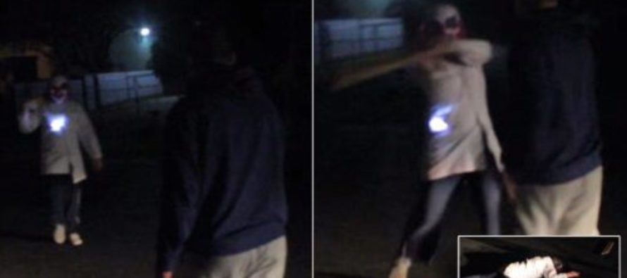 Creepy ATTACK: Australian Clown Attacks Man With Plank , Then Clown Is Run Over By Victim's Friends – VIDEO
