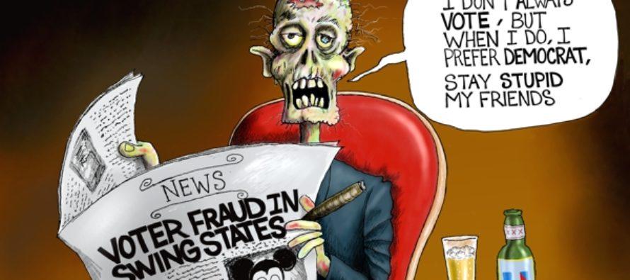 Democratic Decay (Cartoon)