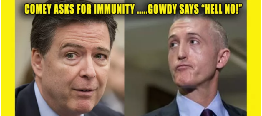 Hillary's Case Is REOPENED, Now FBI's Comey Asks For Immunity – Gowdy Says 'HELL NO' [VIDEO]
