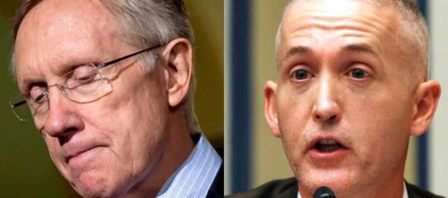 Trey Gowdy Opens A Can Of WHOOP On Harry Reid – And It's Glorious! VIDEO