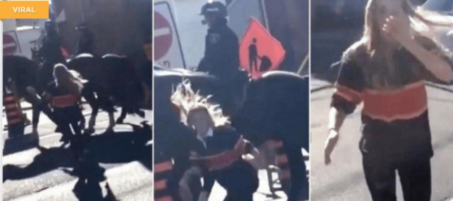 VIDEO: BlackLivesMatter Protester Attacks Police Horse – Gets INSTANT JUSTICE To The FACE!