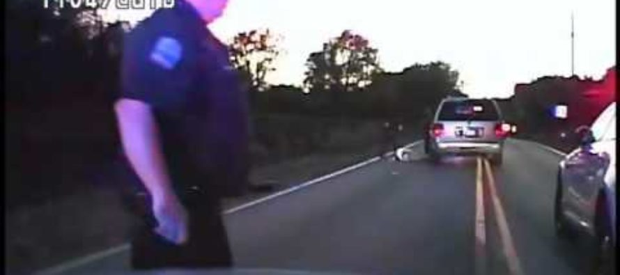 Armed black man pulled over by police, shocks the world because he wasn't afraid