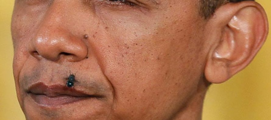 Obama to create new racial category, increase America's race issues