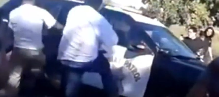 Gang of pedestrians attack police vehicle, cause $12,000 in damages [VIDEO]