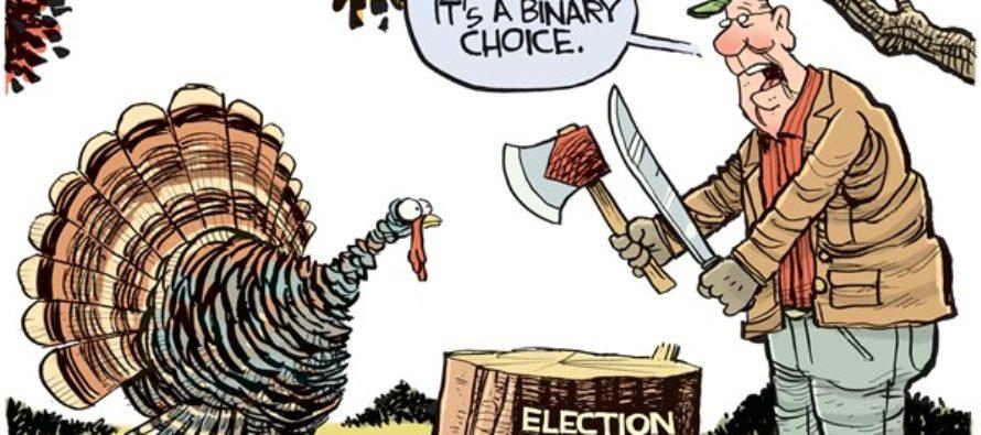 Binary Choice (Cartoon)