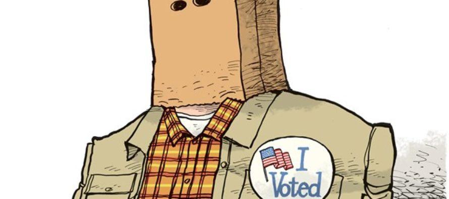 Unknown Voter (Cartoon)