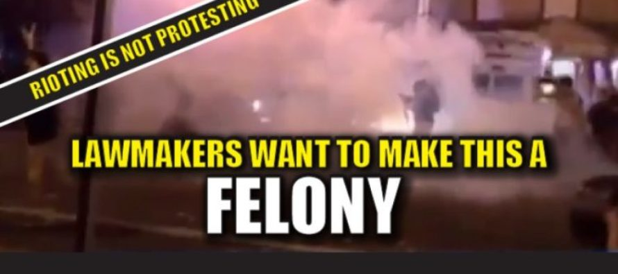 Lawmaker Wants To Make Blocking Traffic & Endangering Public Safety A Felony [VIDEO]