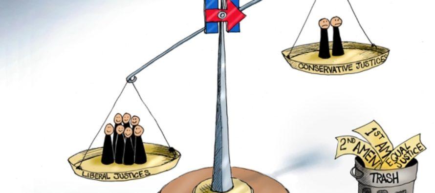 Closing Argument (Cartoon)