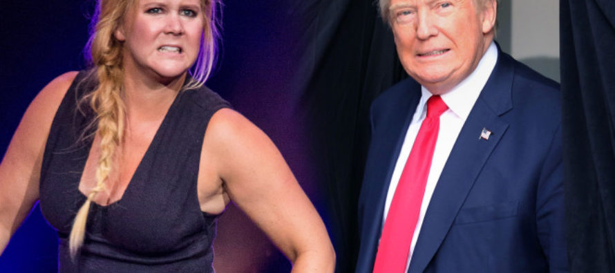 Amy Schumer Said She'd Move To Italy If Trump WON – Now Calls You DISGUSTING For Believing Her