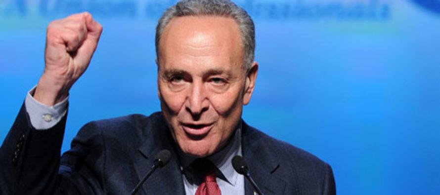 Schumer Plans to Advance Radical Agenda if Dems Take Senate