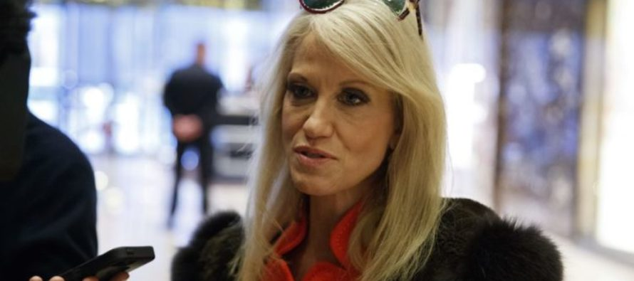 Conway Went On FOX And HIT Hillary Supporters With Truth About 'Russian Hacking' Controversy VIDEO
