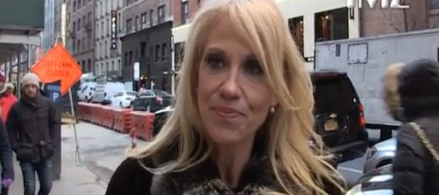 Kellyanne Speaks! Trump will welcome QUALITY celebrities. SORRY Jay-Z and Beyonce! [VIDEO]