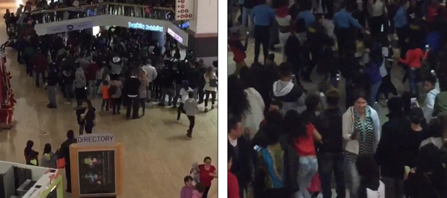 MASSIVE BRAWLS Break Out at Malls Across America [GRAPHIC] [VIDEO]
