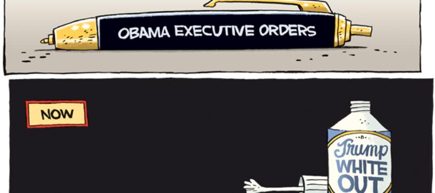 Trump White Out (Cartoon)