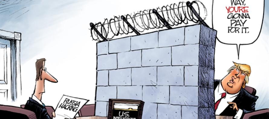 Trump Intel (Cartoon)