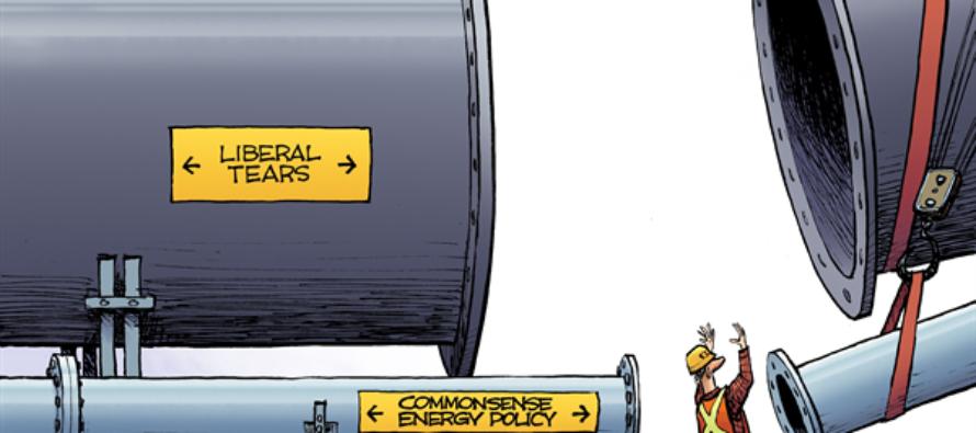 Pipelines (Cartoon)