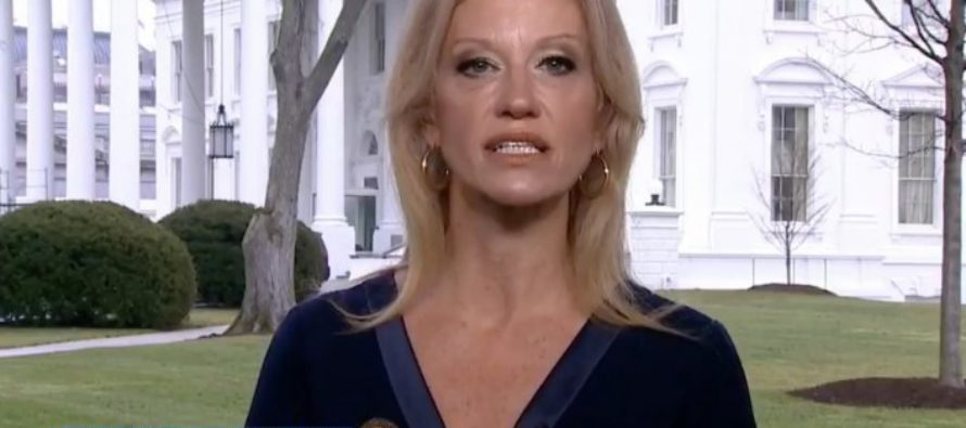 Leftists will cry after what Kellyanne Conway said about Trump's tax returns [VIDEO]