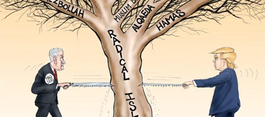Radical Ban Saw (Cartoon)