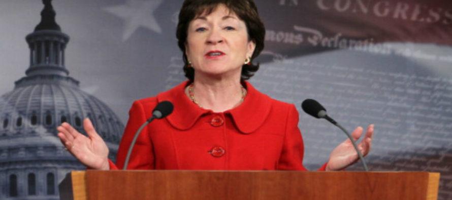 BOOM! Susan Collins STOPS Hearing To Open Can Of WHOOP On Elizabeth Warren – VIDEO