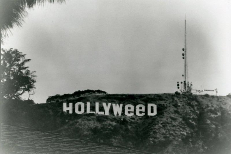 hollyweed-sign-hollywood-sign-california-800x535